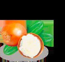 Beurre de Cire
